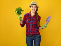 Smiling woman grower with fresh parsley and gardening tool. Healthy food to your table. Portrait of smiling modern woman grower in checkered shirt on yellow Royalty Free Stock Photos