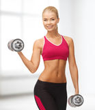 Smiling woman with heavy steel dumbbells Stock Photography