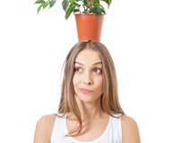 Smiling woman hold houseplant isolated on white. Stock Photo