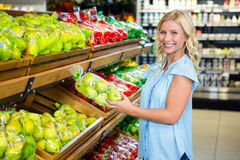 Smiling woman holding apples Stock Image