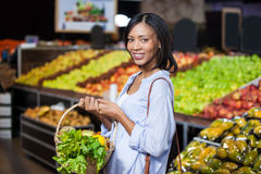 Smiling woman holding fruits and vegetables in basket Stock Images