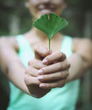 Smiling woman holding Ginkgo biloba leaf i Stock Images