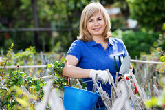 Smiling woman  holding horticultural tools in garden on sunny da. Charming blond mature woman  holding horticultural tools in garden on sunny day Stock Image