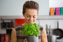 Smiling woman holding and smelling pot of fresh basil Royalty Free Stock Images