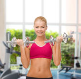 Smiling woman lifting steel dumbbells Stock Images