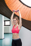 Smiling woman lifting weights in the gym Stock Image