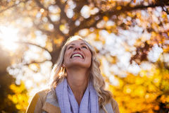 Smiling woman looking up against trees Royalty Free Stock Images
