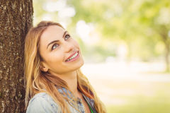 Smiling woman looking up while sitting under tree Royalty Free Stock Photo