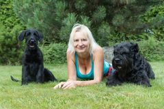 Smiling woman is lying between puppy and adult dog of Giant Black Schnauzer Dog stock photography