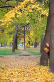 Smiling woman in the park with autumn leaves Stock Images