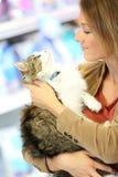 Smiling woman petting her cat Stock Photos