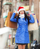 Smiling woman with purchases Royalty Free Stock Image