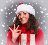Smiling woman in santa hat with gift box Royalty Free Stock Images