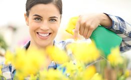 Smiling woman spraying flowers plants at garden, spring concept. Smiling woman spraying flowers plants at garden, spring season concept stock images