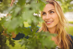 Smiling woman standing by tree at park Royalty Free Stock Photos
