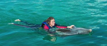 Smiling woman swimming with dolphin. stock photo