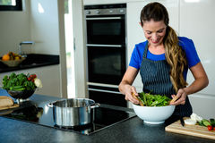 smiling woman tossing a salad for dinner Stock Images