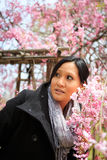Smiling woman under cherry tree Stock Images