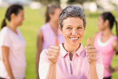 Smiling woman wearing pink for breast cancer in front of friends Royalty Free Stock Photography