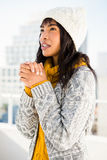 Smiling woman wearing winter clothes and looking otherwise Stock Image