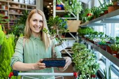 Smiling Woman With Bonsai Tree At Garden Center Royalty Free Stock Images