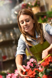 Smiling woman working in flower shop Royalty Free Stock Photo