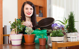 Smiling woman working with flowers in pots. At home royalty free stock photography