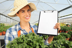 Smiling woman working in greenhouse, shows the blank clipboard Royalty Free Stock Photography