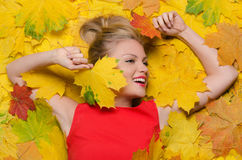 Smiling woman in yellow autumn maple leaves Royalty Free Stock Photo