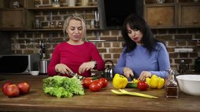 Smiling women cutting vegetables in the kitchen stock footage