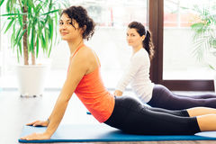 Smiling women doing stretching exercises on a mat. Young women doing stretching exercises on a mattress Royalty Free Stock Photos