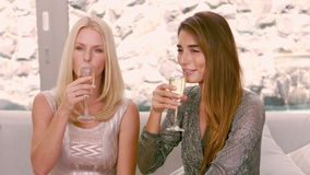 Smiling women drinking champagne glass. In slow motion stock video