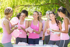 Smiling women organising event for breast cancer awareness. On a sunny day royalty free stock photography