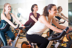 Smiling women riding stationary bicycles Stock Image