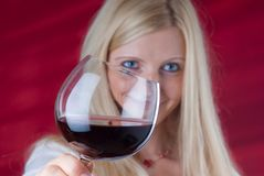 Smiling women toasting gesture Stock Images