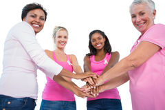 Smiling women wearing breast cancer ribbons putting hands togeth. Er smiling at camera on white background Stock Image
