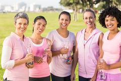 Smiling women wearing pink for breast cancer Royalty Free Stock Images