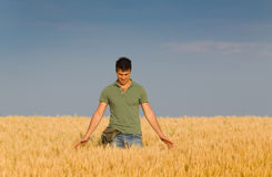 Smiling worker in barley field Stock Images