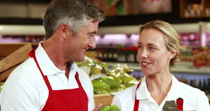 Smiling workers checking vegetables stock video footage