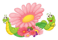 Smiling worms and blooming flowers Stock Photo