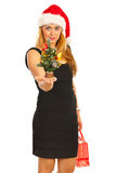 Smiling Xmas woman give tree Stock Photo