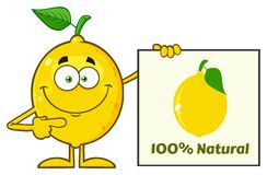 Smiling Yellow Lemon Fresh Fruit With Green Leaf Cartoon Mascot Character Pointing To A 100 Percent Natural Sign. Illustration Isolated On White Background Vector Illustration