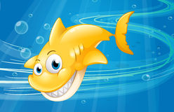 A smiling yellow shark at the sea Royalty Free Stock Photography