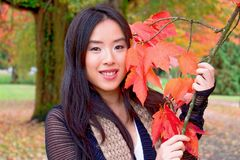 Attractive young woman holds branch of colorful autumn leaves. Smiling young Asian woman holds branch of colorful red and orange maple leaves during autumn stock photo
