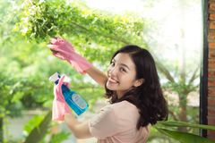 Smiling young asian woman housewife washes a window.  Royalty Free Stock Photography