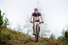 Smiling young bicyclist rides on top of hill Royalty Free Stock Images