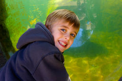 Smiling boy with aquarium tank Stock Photography