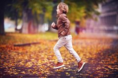 Smiling young boy, kid having fun in autumn city park among fallen leaves royalty free stock photos