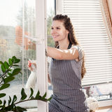 Smiling young brunette cleaning windows using Royalty Free Stock Photo
