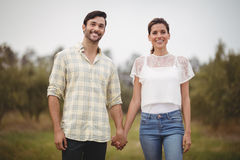 Smiling young couple holding hands at olive farm Royalty Free Stock Image